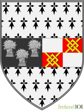 Coat of arms County Kilkenny