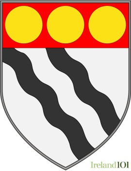 Coat of arms for Co. Leitrim