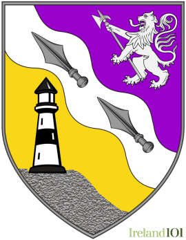 New coat of arms for County Wexford