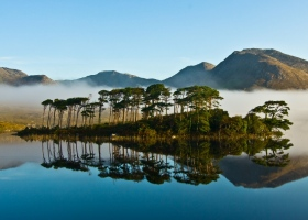 Pine trees island on Derryclare Lake