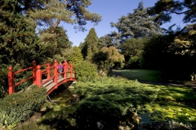 The Japanese Gardens at Tully