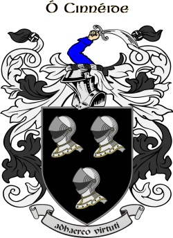 https://www.ireland101.com/images/tribe_crests/kennedy.jpg